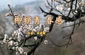 《柳梢青 春感》刘辰翁  视频朗诵
