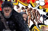 【独播】猩猩真的能进化成人类吗?【小略周末秀06】