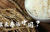 21世紀誰來養活中國人?