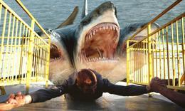 见过长三个头的变异鲨鱼么