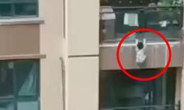 眾人拉棉被接住6樓墜落男童