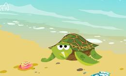海龟为什么要上岸产卵?