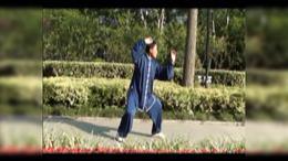 传统杨氏太极拳85式内功慢拳(上海夏国庆)