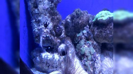 温州 海洋馆