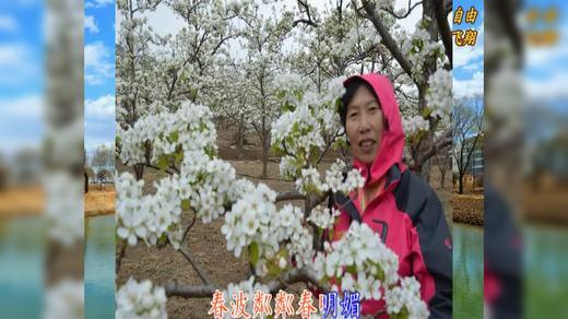 太极拳班北镇赏梨花的动感相册《一》