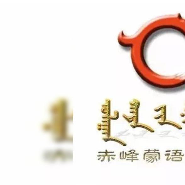 CFTV蒙编部