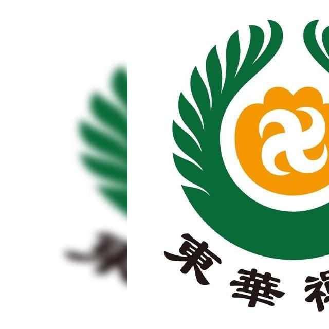 东华汽车logo