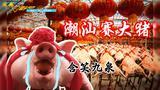潮汕赛大猪,村民把巨猪排排站齐,谁大谁称王?