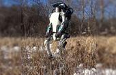机器人又学会了新姿势