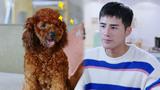 《我的机器人男友》假如你的宠物会说话:活的不如狗系列!