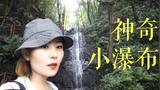 真的美过西湖?30分钟冒雨徒步杭州人推荐的九溪烟树 你们觉得呢?