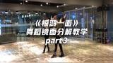 白小白《惊鸿一面》舞蹈镜面分解教学part3,柔美中国风【口袋教学】