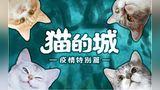 顶着骂名,他依旧在武汉的救猫路上奔波