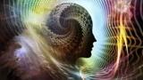 意识才是生命的本质?人类是三维生物,而大脑或可存在于十一维