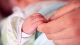南京一刚出生男婴遭母亲活埋玉米地 检方建议这样判刑