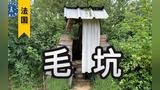 法国农村小两口【自建小木屋】是我要的生活(除了毛坑)