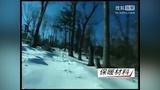 [央视单板和双板滑雪教程].单板01 滑雪学习宝典