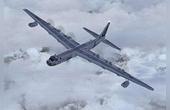轟炸機40噸炸彈戰果一頭牛