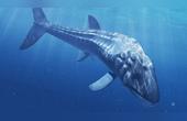 史上最大的魚,生活在侏羅紀