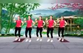 DJ版健身广场舞《风雨中的情》红袖演唱 简单易学32步附分解