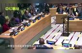 113国赞成 遭中俄1票否决