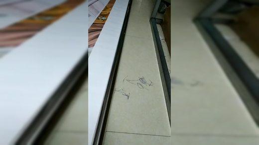 睿一旗舰店 粘管子视频