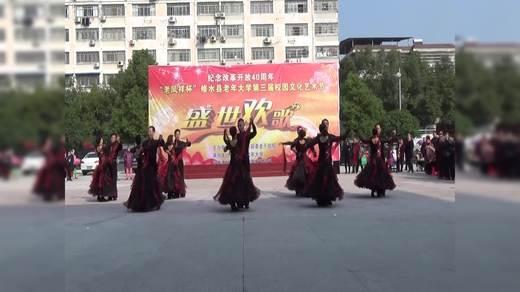 体育舞蹈(魅力炫舞)