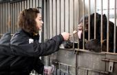 她养了86只熊,一起生活了9年,看完想哭了