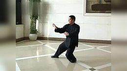 杨式28式太极拳:(傅 清 泉)