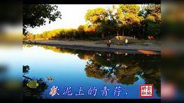 01 a再别康桥 作者徐志摩 朗诵陈醇 西克制作