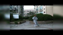 DVD制式张玉花演练传统杨氏太极拳85式