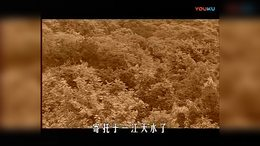 毛泽东诗词音像全集4 西克制作 西克朗诵
