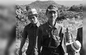二战为何有个日本兵不投降