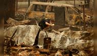 超220人失踪,25万人紧急撤离,废墟景象如同世界末日!