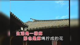 苦乐年华 电视剧《篱笆 女人和狗》主题曲  自娱自乐...