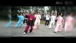 2016海南练习  杨式28式拳传统太极拳