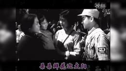 苦菜花开闪金光【演唱:王月华(天歌流韵)】_标清