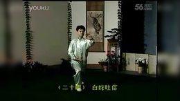 16  40式杨式太极拳第四段示范教学背向演示_标清