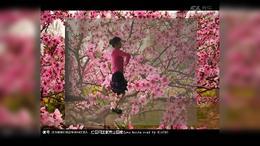 041 桃花朵朵开 广场舞