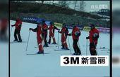 [央视单板和双板滑雪教程].双板02 滑雪学习宝典