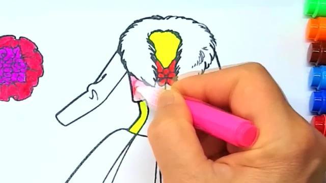 儿童涂鸦简笔画:彩色的花朵和裙子