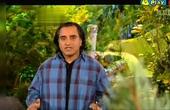 Jackanory Junior S02E01 The Gruffalo & Room On The Broom (Told By Sanjeev Bhaskar) (2008)