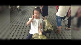 柠柠游北京动物园