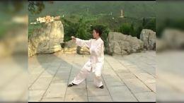 85式杨式传统太极拳 (黎 慧 琳)