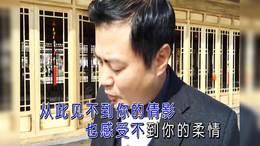 王小荣 慌乱的心KTV 标清双音真人版