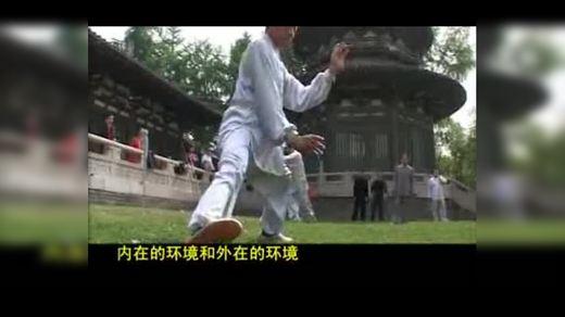 太极中国太极拳小细节人物表演0004