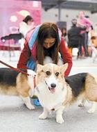 [UnrealPlus 360VR]2016北京-蟹岛国际会展中心宠物文化节part2