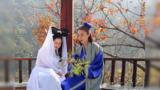 许仙为什么婚前大受欢迎,婚后又让人讨厌呢,白娘子是这样说的
