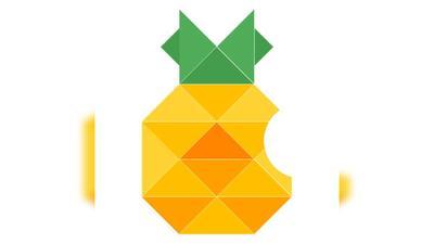 菠萝针钩法图解步骤