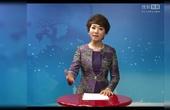 杨路微视频  第7讲 《裙装和裤装的争锋》